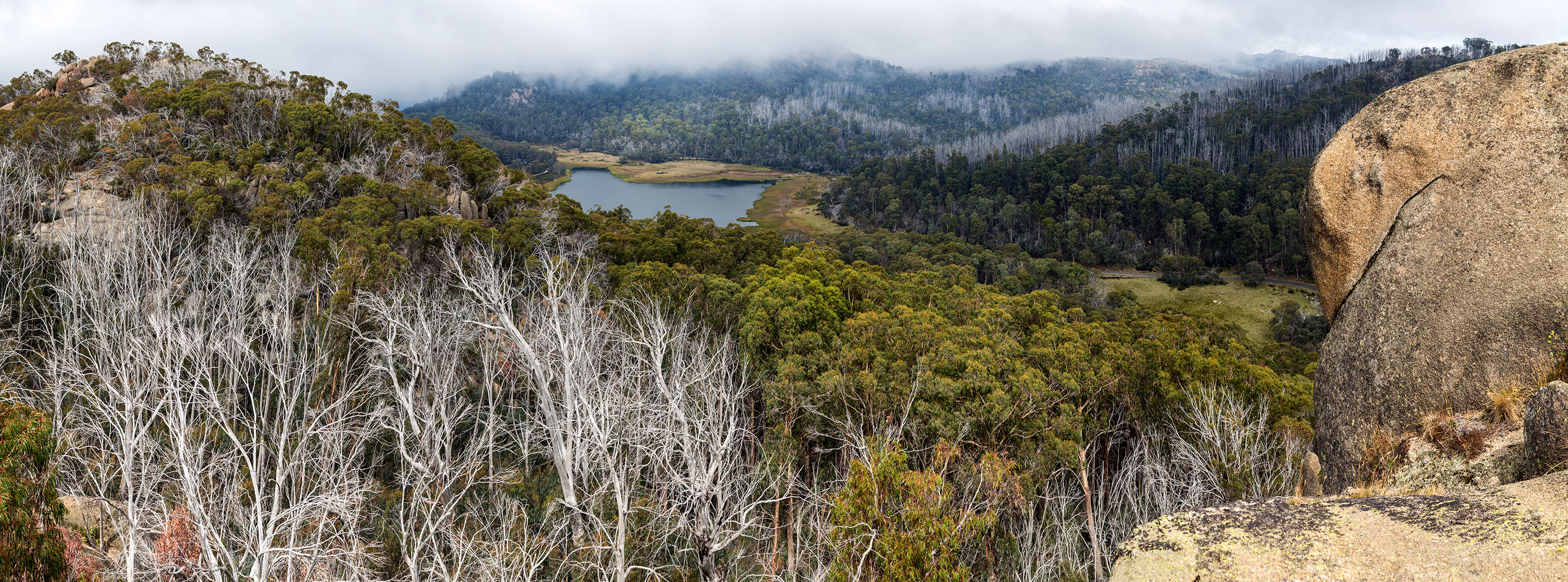 Image of Snow Gums and lake Catani, taken from the Monolith, Mount Buffalo National Park