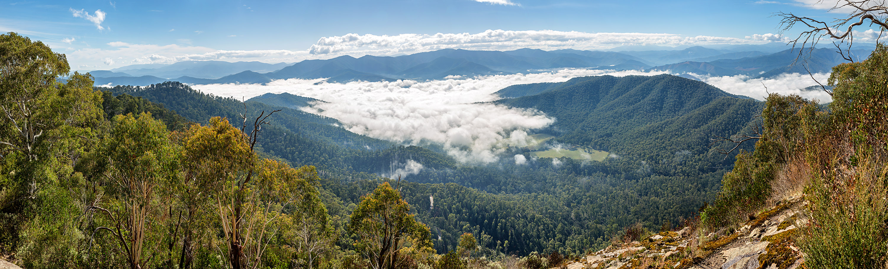 Image of Victorian High Country from Mt Buffalo