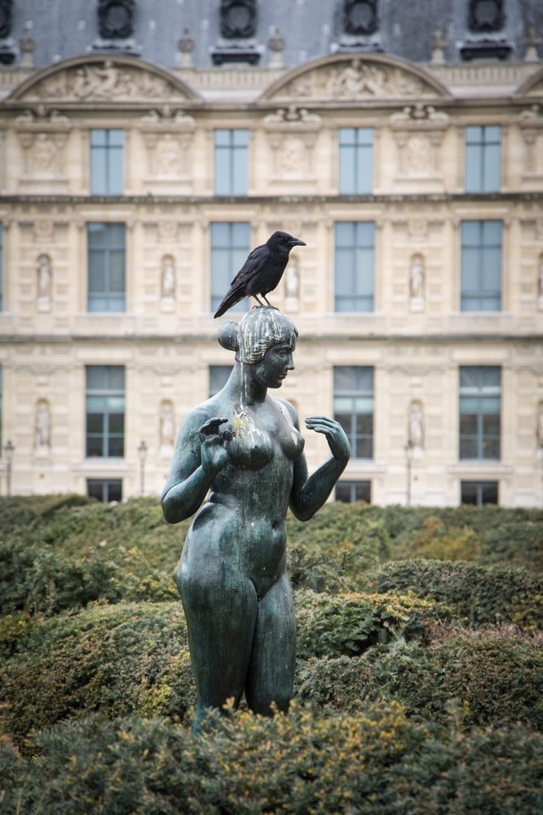 Image of black bird on a statue in the Garden Tuileries
