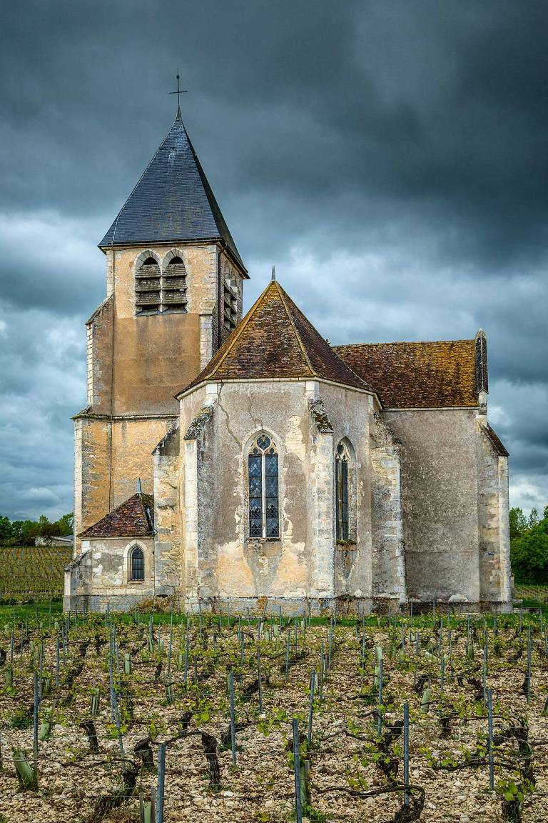 Wine and cellar tour at Domaine Jean-Marc Brocard, Chablis