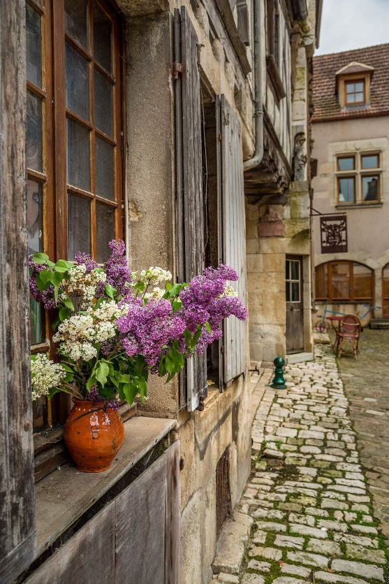 Flowers in Noyers-sur-Serein, Burgundy