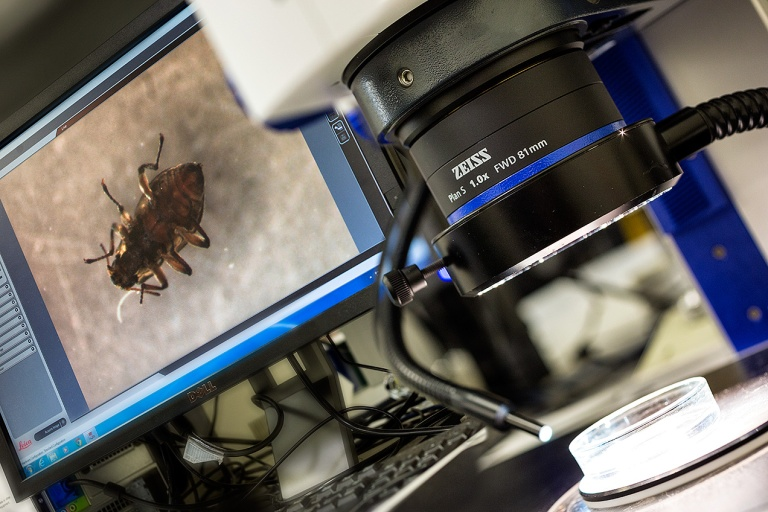 MDFRC microscope with 'bug' at the lab in Albury © Michael Evans Photographer 2014