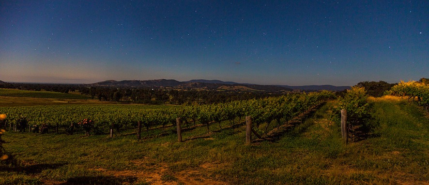 Warrenmang vineyard by moonlight - © Michael Evans Photographer 2014