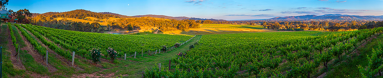 View from chalet at Warrenmang winery in the Victorian Pyrennes- © Michael Evans Photographer 2014