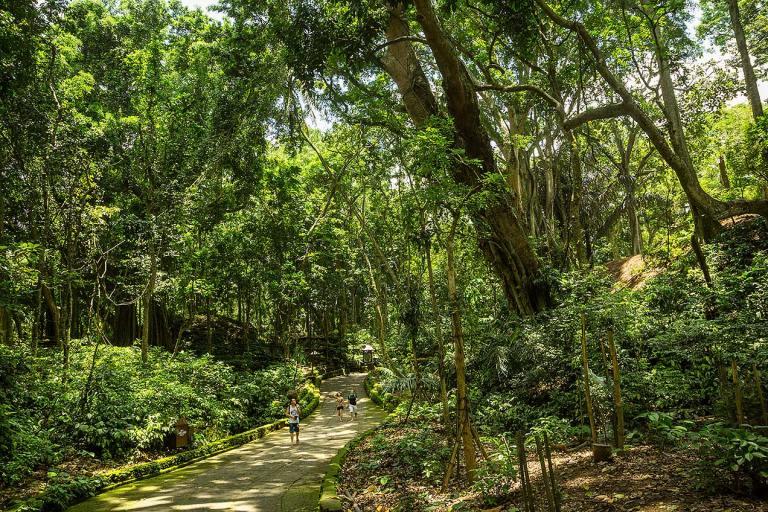 Monkey Forest Ubud, Bali © Michael Evans Photographer 2014 - www.michaelevansphotographer.com