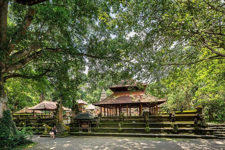 Monkey Forest Temple, Ubud, Bali - © Michael Evans Photographer 2014 - www.michaelevansphotographer.com