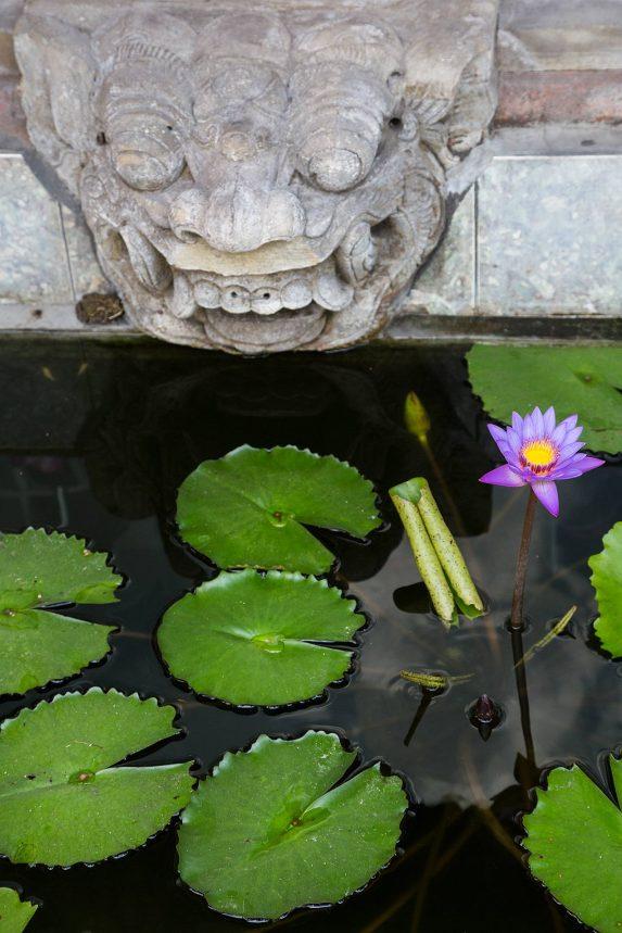 Ubud, Bali - © Michael Evans Photographer 2014 - www.michaelevansphotographer.com