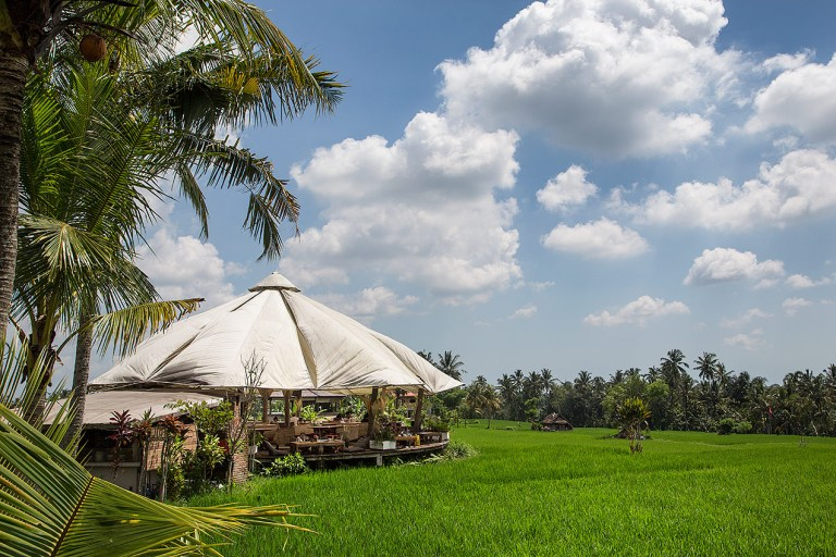 Café Pomegranate, Ubud, Bali - © Michael Evans Photographer 2014 - www.michaelevansphotographer.com