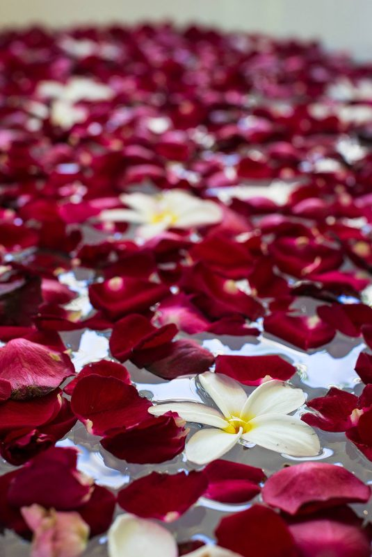 Rose petals in the bath, Kayumanis Private Villa and Spa, Bali - © Michael Evans Photographer 2014 - www.michaelevansphotographer.com