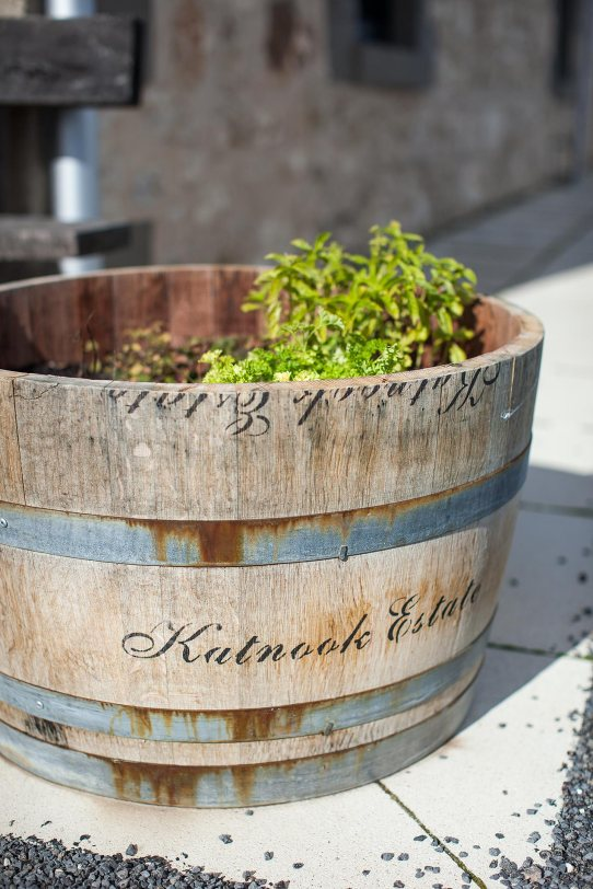 Barrel plant pot at Katnook © Michael Evans Photographer 2014 - www.michaelevansphotographer.com