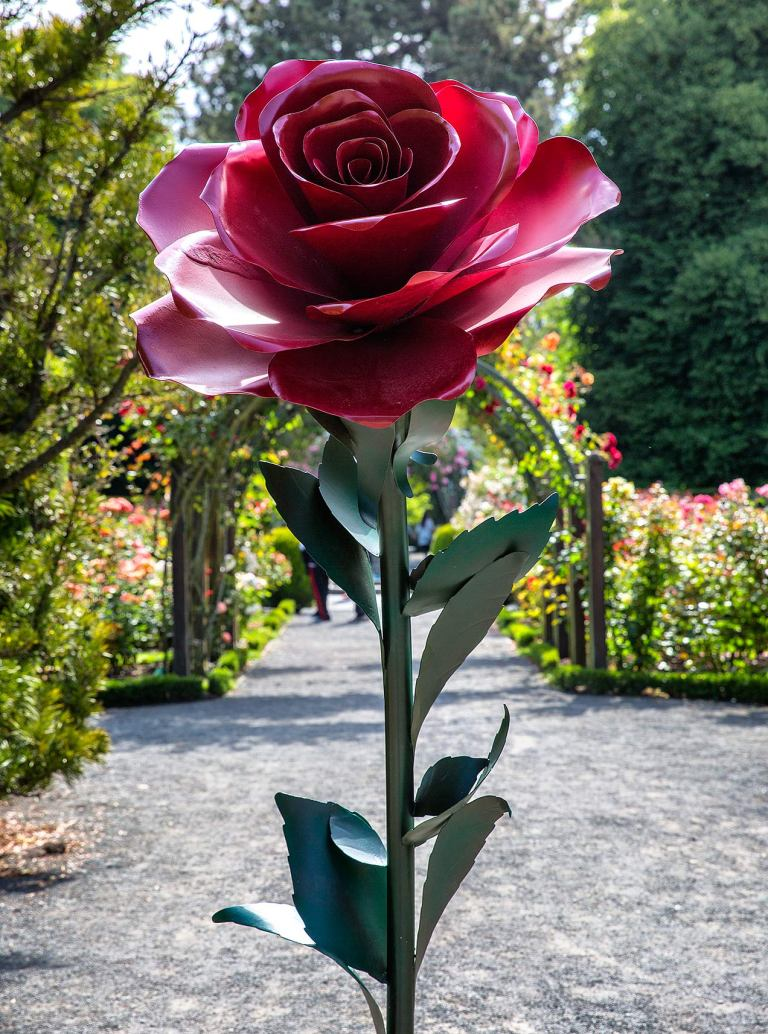 Rose sculpture, Christchurch Botanic Gardens© Michael Evans Photographer 2015