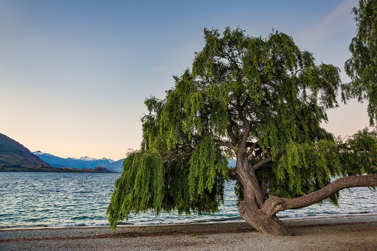 Lake Wanaka © Michael Evans Photographer 2015 - www.michaelevansphotographer.com