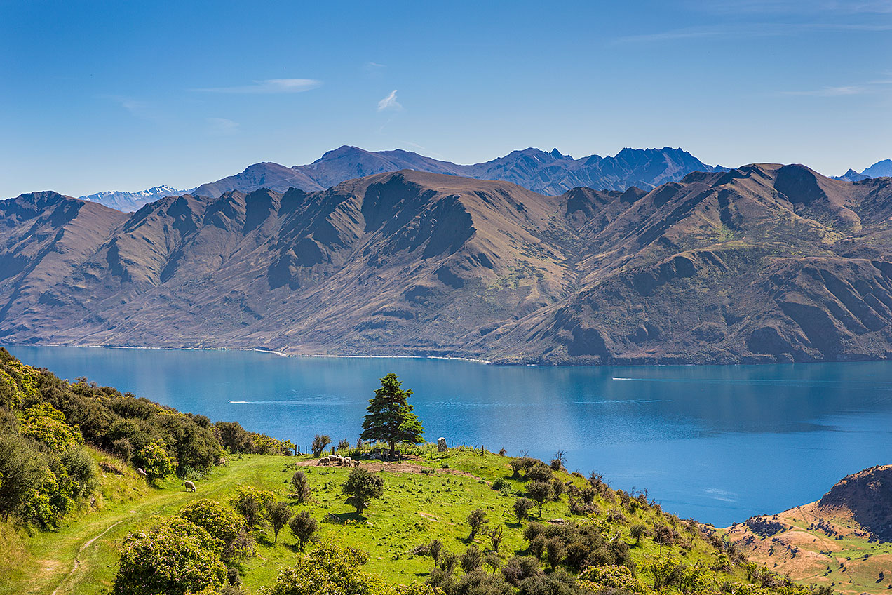 View from Roy's Peak over Lake Wanaka, New Zealand © Michael Evans Photographer 2015