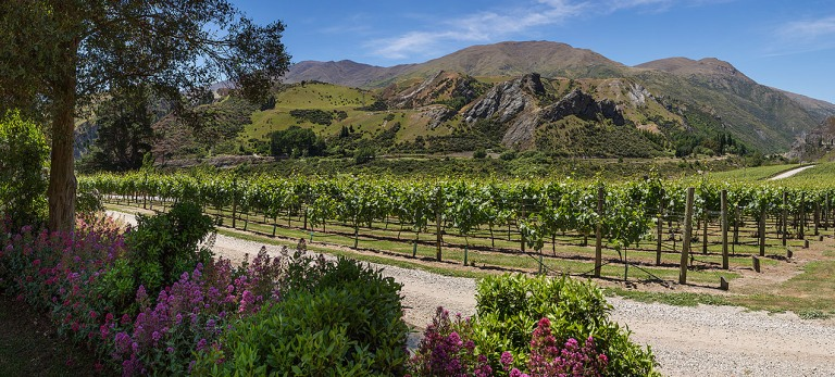 Chard Farm Winery, Central Otago, New Zealand  © Michael Evans Photographer 2015