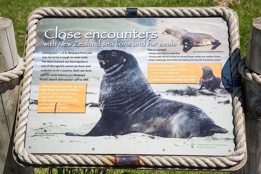 Sign describing the Sea Lions © Michael Evans Photographer 2015