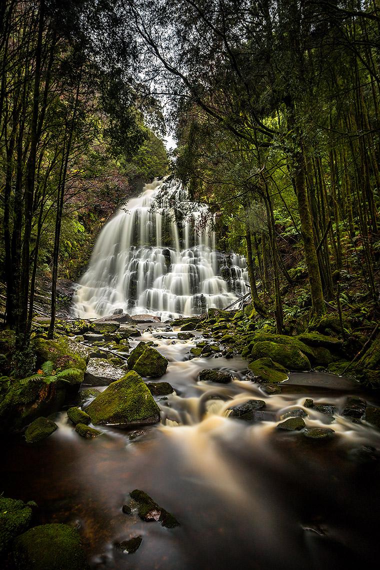 Nelson Falls, Tasmania © Michael Evans Photographer 2016