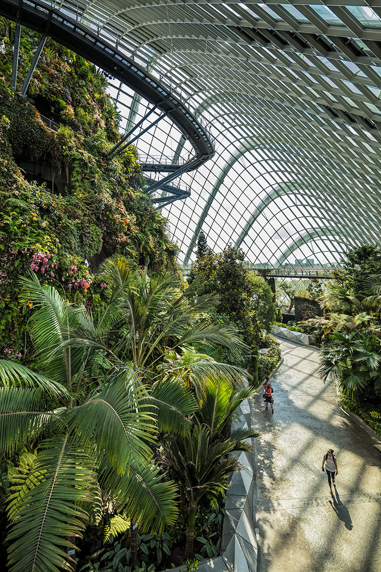 Gardens By The Bay, Singapore © Michael Evans Photographer 2017