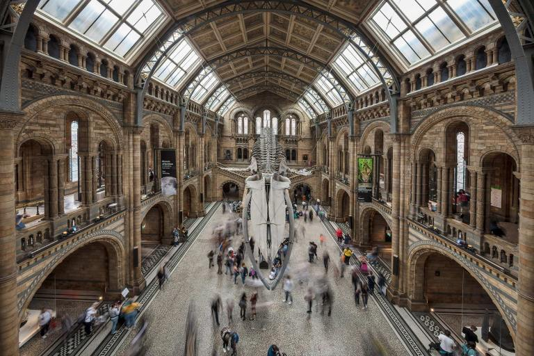 Image of the Natural History Museum in South Kensington, London © Michael Evans Photographer 2019